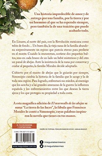 El murmullo de las abejas de la autora mexicana Sofía Segovia   Letras y Latte - Libros en español