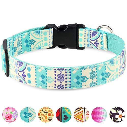 🥇 Taglory Collar Perro Ajustable
