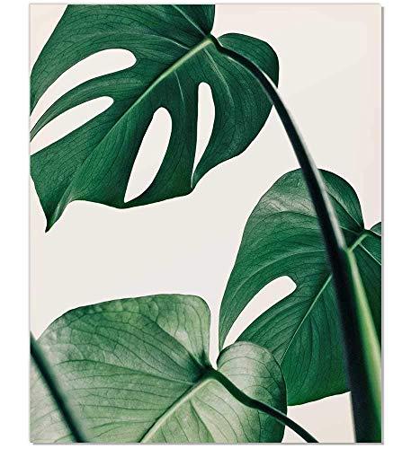 amazon com tropical leaf print botanical print palm print