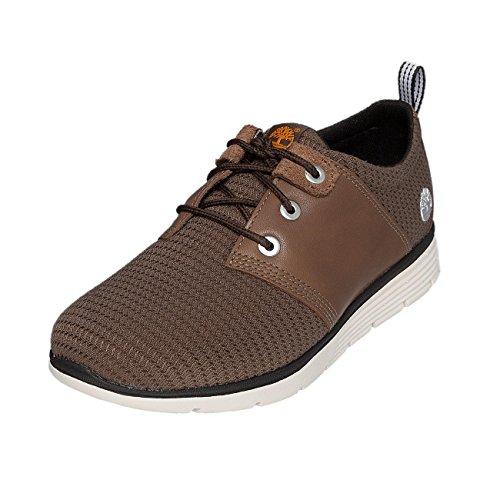 Uomo Nubuck Timberland Oxford Sneakers Black Iris Killington Marrone YTqw1