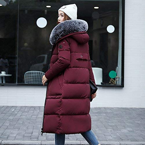Libero Cappotto Invernali in Piumini Grazioso BIRAN Fashion Cappuccio Invernale Addensare Outdoor Tempo con Lunga Manica Calda Pelliccia Piumino Parka Trapuntato Winered Eleganti Lunga Donna wxUCCq41