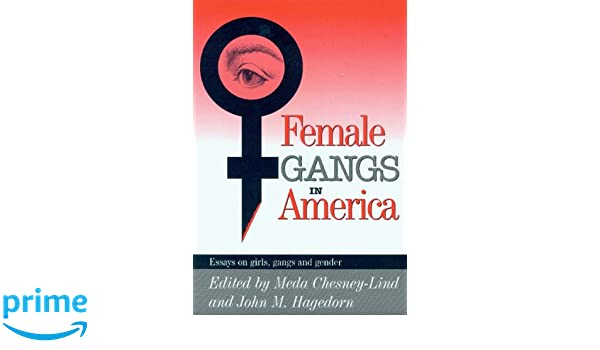 com female gangs in america essays on girls gangs and com female gangs in america essays on girls gangs and gender 9780941702478 meda chesney lind john m hagedorn books