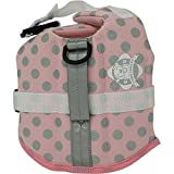 Paws Aboard PAWPG1100 Neoprene Doggy Life Jacket, XX-Small, Pink