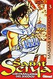 saint seiya (Spanish Edition)