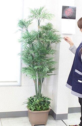 山久 シルクフラワー の パーラーパーム 160 2513 1811-2203 CT触媒加工 snb 観葉植物 造花 B01GYGW1U0