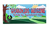 Evergreen Grandkids Welcome Decorative Mat Insert, 10 x 22 inches