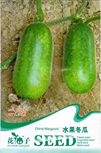 Gourd Seed 10 Green Healthy Vegetable Fruit Wax Gourd Seed Tasty Nutritious B048 By Mikedaoer