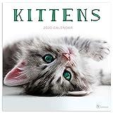 2020 Kittens Wall Calendar