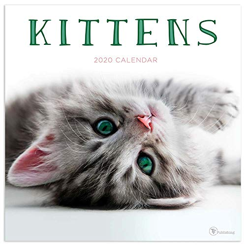 Top 8 kittens calendar 2019 tf publishing for 2020