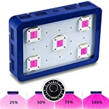 Cheap BestVA X5 Dimmable 1000W COB LED Grow Light Module Design Full Spectrum for Greenhouse and Indoor Plant Flowering Growing(5pcs 200w) (1000W, Blue)