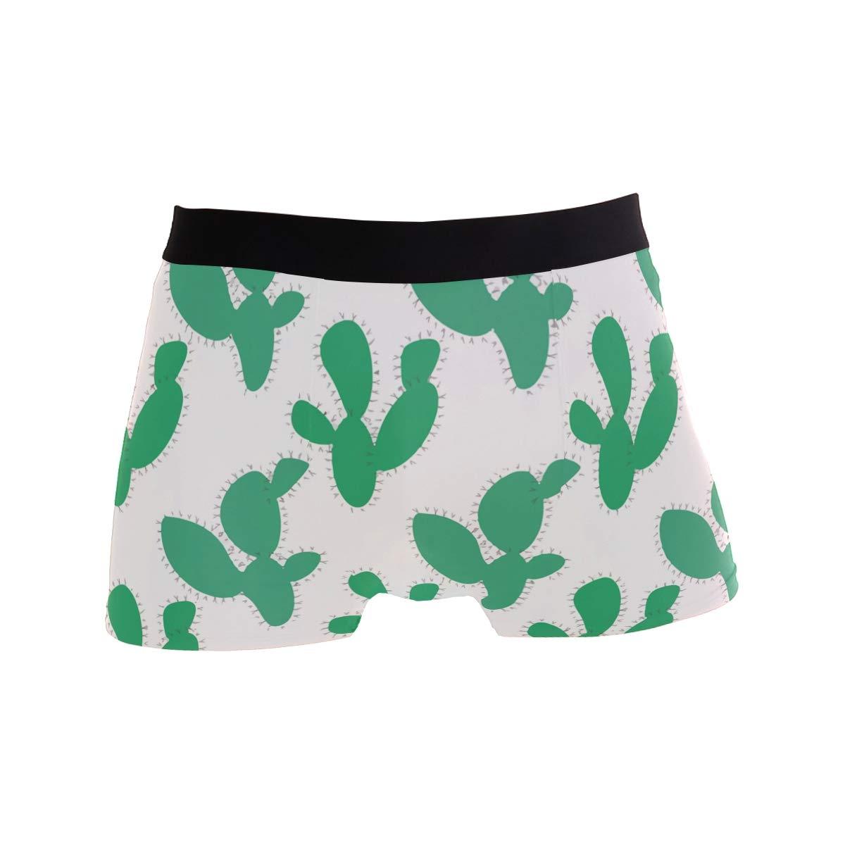 Mens Soft Breathable White Cactus Plants Art Underwear Boxer Briefs