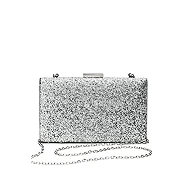 Women Clutch Purse Wallet Hard Case Evening Bag Glitter Handbag With Chain Strap (silver)