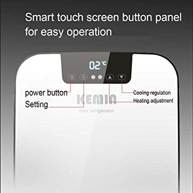 Amazon.com: Ffl2019 refrigerador pequeño refrigerador para ...