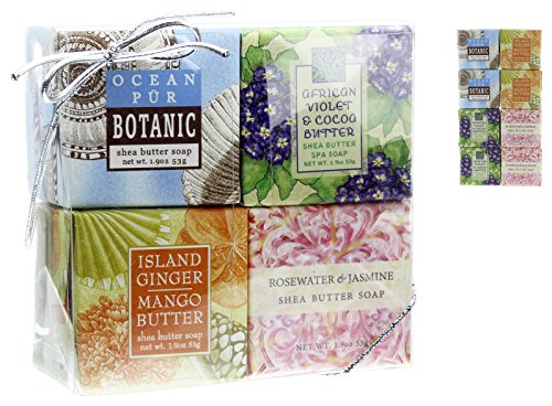 Bundle of 8 Greenwich Bay 1.9 Oz Shea Butter Bar Soaps in Clear Plastic Gift Box (Ocean Pür, Violet, Ginger Mango, Rosewater Jasmine) (Soaps Gift Box Shea Butter)