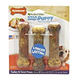 Nylabone Healthy Edibles Regular Sweet Potato and Turkey Flavored Puppy Dog Treat Bones, 3 Count