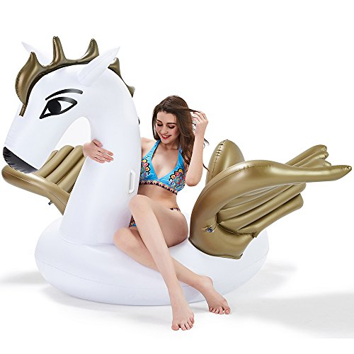 Leisure Giant Inflatable Pegasus Pool Float  Large Outdoor S