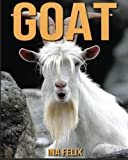 Goat: Children Book of Fun Facts & Amazing Photos on Animals in Nature - A Wonderful Goat Book for Kids aged 3-7