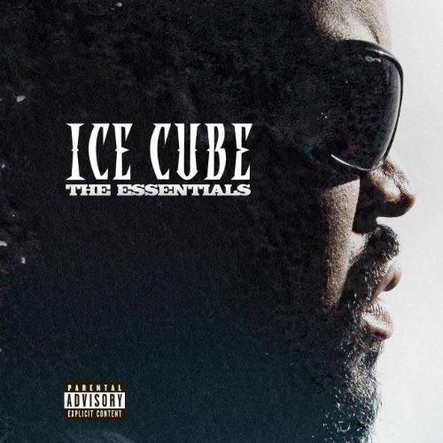 ice cube check yo self - 6