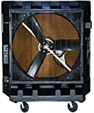 Portacool PAC2K482S 48-Inch Portable Evaporative Cooler, 20000 CFM, 4000 Square Foot Cooling Capacity, 2-Speed, Black