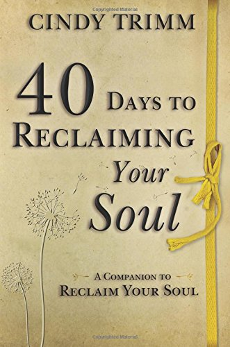 Read Online 40 Days to Reclaiming Your Soul: A Companion to Reclaim Your Soul pdf epub