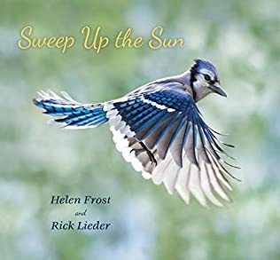 book cover of Sweep Up the Sun