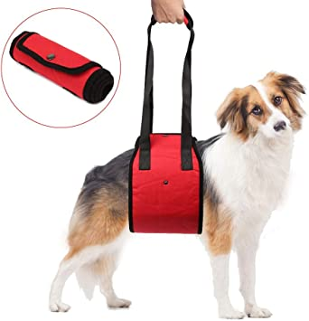 Funkeen - Arnés de apoyo para perros con soporte de elevación para ...