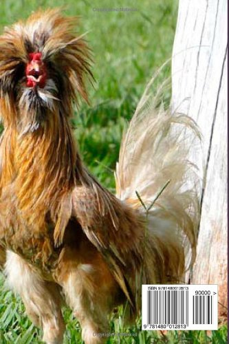 Best Chicken Breeds 12 Types Of Hens That Lay Lots Of Eggs Make Good Pets And Fit In Small Yards Plus Bonus 5 Varieties Of Exotic Poultry Ruppenthal R J 9781480012813 Amazon Com Books