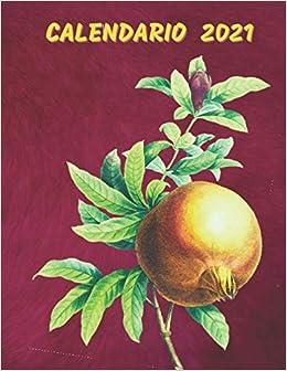 Calendario 2021: Calendario Mensual Ilustrado de Frutas 2021