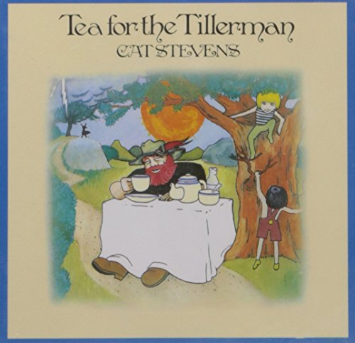 Price comparison product image Tea For The Tillerman (Remastered)