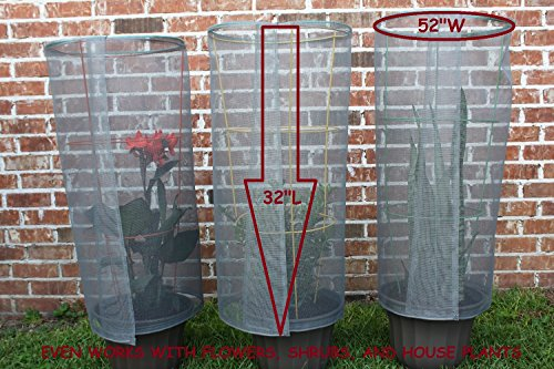 tomato screen plant protector - buy online in uae