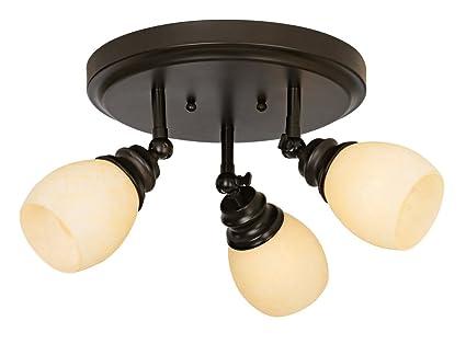 Elm Park Collection Bronze 3 Light Adjustable Light Fixture