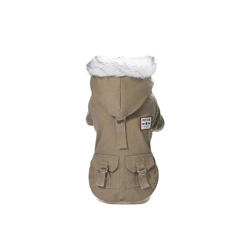 Manteau De Coton Chien De Compagnie Mignon Petit Pendentif Cerise Automne Et Hiver Sweats /à Capuche Chiens Chats CIELLTE Dog Costumes Chien Chiot Sweat-Shirt Chaud Manteau Veste