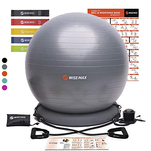 WISEMAX Exercise Ball Chair – Stability Yoga Balance Ball with Ring Base, Resistance Bands & Pump, Loop Bands, Carry Bag…
