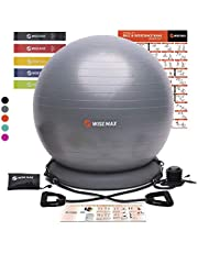 WISEMAX Exercise Ball Chair – Stability Yoga Balance Ball with Ring Base, Resistance Bands & Pump, Loop Bands, Carry Bag, Poster for Home, Office, Posture, Gym Bundle- 65cm Black Gray