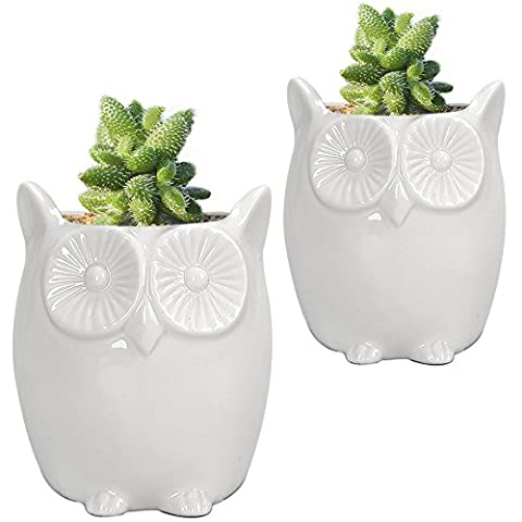 GeLive Set of 2 Owl White Ceramic Succulent Planter Flower Pot Window Box - Ceramic Tortoise Vases