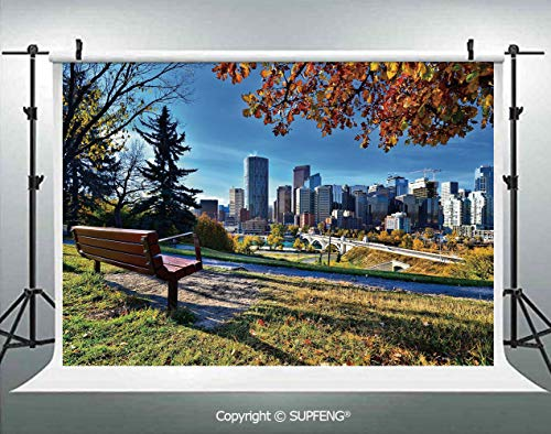 Background Park Bench Overlooking The Skyline of Calgary Alberta During Autumn Tranquil Urban 3D Backdrops for Interior Decoration Photo Studio Props
