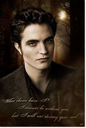 twilight posters for bedrooms
