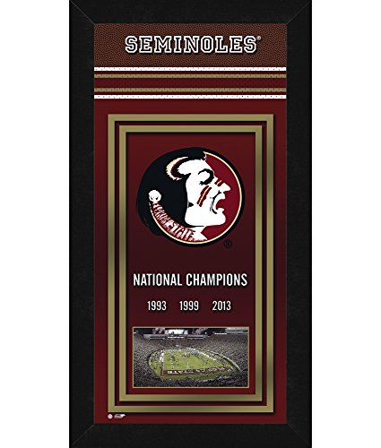 "NCAA Florida State Seminoles Sports Photo Banner, 14"" x 27"" by Photo File"