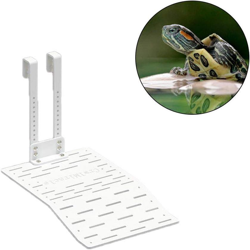 plataforma para acuario decoraci/ón para tortuga de reptil peque/ño Medium ranas de terrapina rampa de reptil pecera Plataforma de tortuga flotante para reptiles