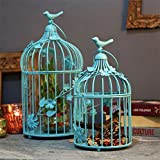 Homesake Turquoise Bird Cage With Floral Vine (Set Of 2)