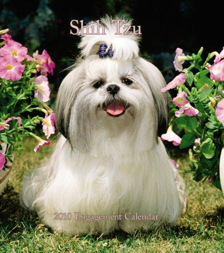 Shih Tzu 2010 Hardcover Weekly (Shih Tzu 2010 Calendar)