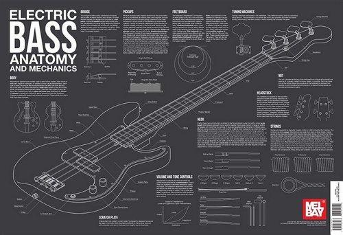 (Electric Bass Anatomy and Mechanics Wall Chart)