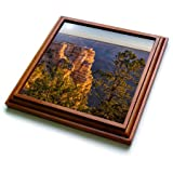 3dRose trv_278471_1 USA, Arizona, Grand Canyon National Park South Rim Trivet with Tile, 8 by 8''