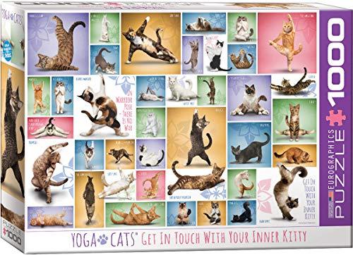 cat puzzle 1000 - 3
