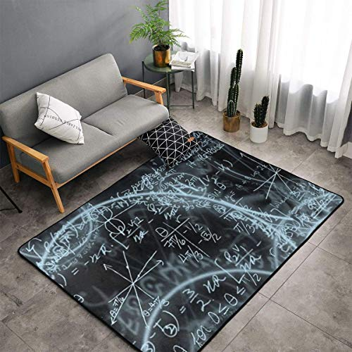 LIN. Math Formula Equation Black Area Rug Memory Foam Doormat Floor Mat with Anti-Skid Rubber Backing, Quick Dry Tub Shower Bath Rug Shaggy Rugs Home Art Super Soft Nursery Rugs