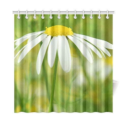 DFNRF Decor Peculiar Design Bath Curtain Flower Spring Blossom Bloom Affection Fragrance Polyester Fabric Waterproof Shower Curtain for Bathroom, 72 X 72 Inch Shower Curtains Including Hooks