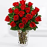 ProFlowers - 18 Long Stemmed Red Roses (with FREE glass vase) - Flowers