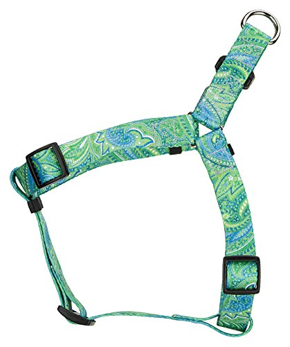 Image of Country Brook Design Green Paisley Step-in Dog Harness - Large