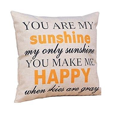 HP95(TM) Cotton Linen Square Throw Pillow Case Decorative Cushion Cover Pillowcase for Sofa 18  X18