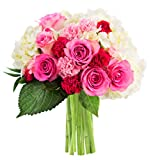 Let Them Eat Cake Bouquet of Pink Roses and White Hydrangeas Accented with Red & Pink Carnations and Lush Greens
